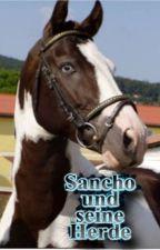 Sancho und seine Herde by Saranly