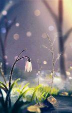 (12 Chòm Sao) Quá Khứ Và Hiện Tại by Ranko_Chan