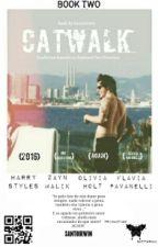 Catwalk → H.S {HIATUS} by SantoIrwin