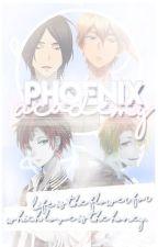 Phoenix Academy (Very slow updates!) by kittyyy-