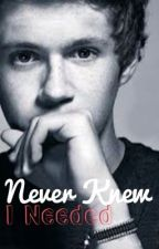 Never Knew I Needed (A Niall Horan love story... or is it?) (finally finished) by 1Dluvahgirl1188