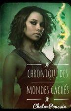 Chroniques des mondes cachés by ChatonPoussin