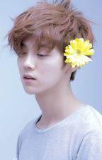 [SeoHan Fanfic] CLOVER by NaiBuBi