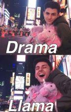 Drama Llama ::Rants by yoongixflower