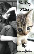 The Tiny Kitten by Teenwolfmk55
