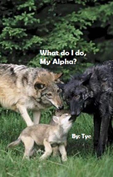 What do I do, My Alpha? (mpreg) (boyxboy)