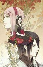 (Longfic Sasusaku) Lần đầu biết yêu by kikochan_2706