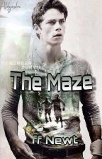The Maze || FF ₪ Newt by Alex_Skaluk