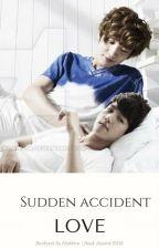 Sudden accident -love ||EXO by hakkiro