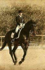 W Pogoni za Marzeniem- Konie by Sznauceria