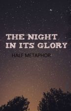 The Night In Its Glory by halfmetaphor