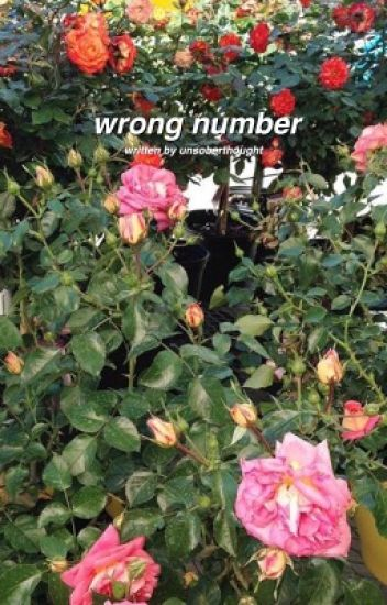 wrong number | choi youngjae {completed}