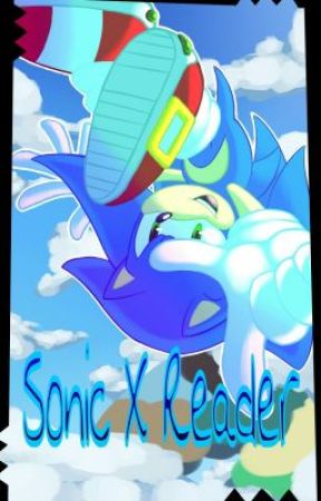 Sonic X Reader *ON HOLD UNDER EDITING PROCESS SORRY* by iNSaNeDUCKEH16