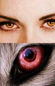Đọc Truyện [short fic ] Your Wolfman ,My Vampire / yulsic / PG-17 (chap 10+Bonus / FULL ) - nAmOm_yulsic