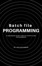 Batch File Programming by wolfskater989