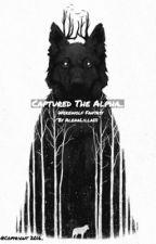 Captured The Alpha ( Werewolf/Jason McCann) ON HOLD.. by AlenaLilla111