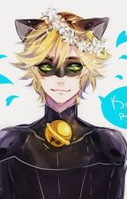 Chat Noir x reader by lost-in-the-stars-