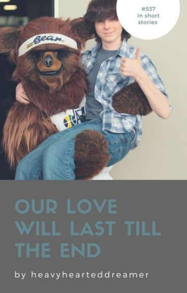 Our Love Will Last Till The End [C.R. x Reader]