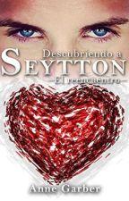 Descubriendo a Seytton - El Reencuentro by Cenicienta1
