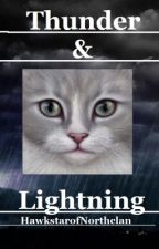 Thunder and lightning: Warrior cats by TheMageOfBlood