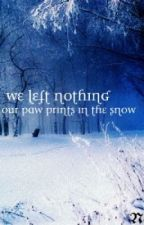 We left nothing, but our paw prints in the snow by Nettle