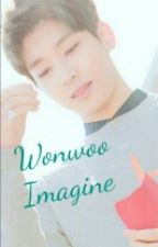 WONWOO IMAGINE by Fairyjoww