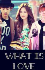 What Is Love Chanbaek SeoYeol TERMINADA minbaek chenmin sulay 2min  by baekyeolhanhunkaisoo