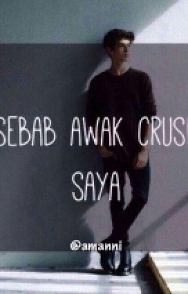 Sebab Awak Crush Saya ( SLOW UPDATE SORRY)