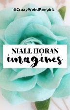 Niall Horan Imagines by CrazyWeirdFangirls