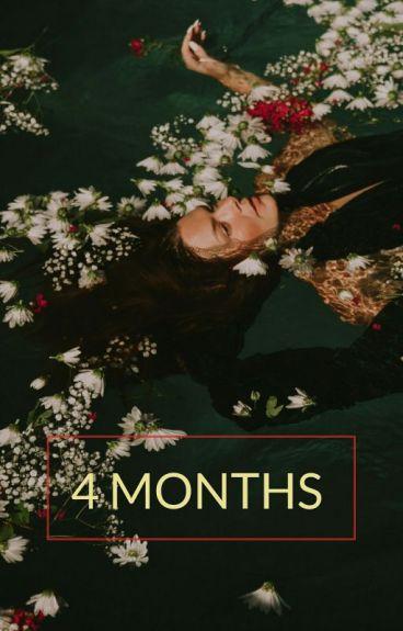 4 Months [ Harry Styles BG. Fanfic ]