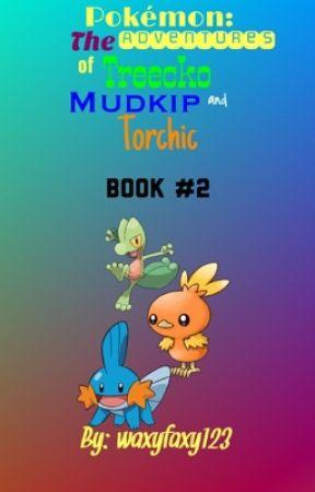 Pokmon The Adventures Of Torchic Mudkip And Treecko 2