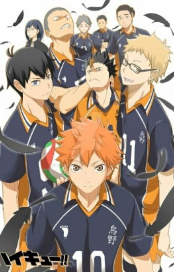 Haikyuu X Reader Oneshot Collection 18+
