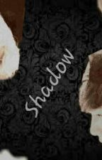 Shadow by Park_Kyeongri