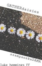 gather daisies || hemmings by szampanskadama