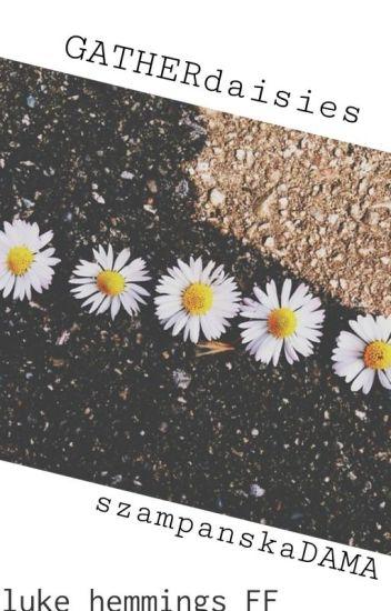 gather daisies || hemmings