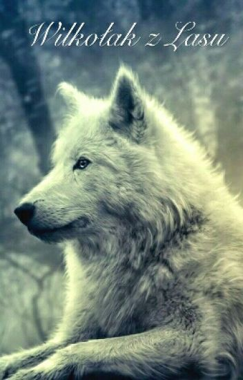 Wilkołak z Lasu (Yaoi)