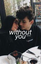 Without You ✧ Stiles Stilinski  by -badsogirl