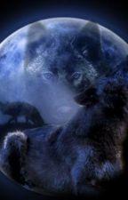 Forbidden love (werewolf and vampire) by JordanLaCharite
