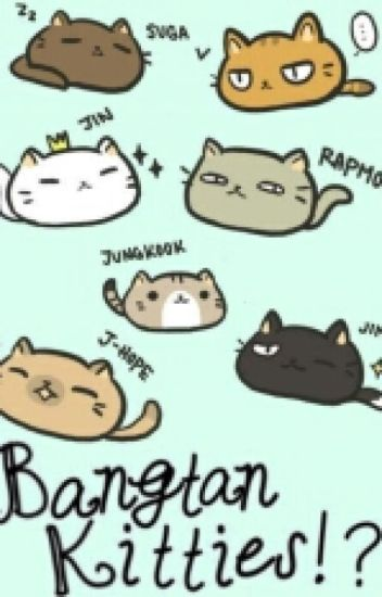 Bangtan Kitties!? (Bts X Reader)
