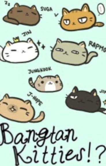 Bangtan Kitties!? (Bts X Reader)