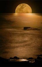 Moonlight by JaelynnReneeSmith