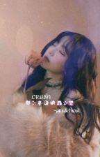 『 crush ﻬ btsvelvet 』  by -arsdefsoul