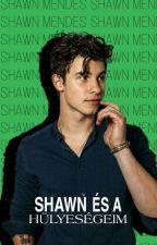 Shawn és a hülyeségeim by Little_calmi