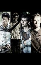 The maze runner preferences by laura_dolan