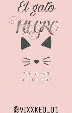 El Gato Negro (Vixx) (Leobin) (Navi) (Hyuken) [PAUSADA] by VIXXKEO_01