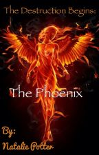 The Destruction Begins: The Phoenix by Natsternooster