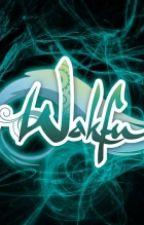 The Future of Wakfu (ON HOLD) by Zima_the_Eliatrope
