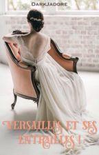 Versailles et ses entrailles ! // EN PAUSE // by DarkJadore