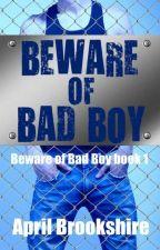 Остерегайтесь плохого парня by Sanya_baby