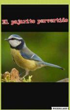 El Pajarito Pervertido by perbertida_696688